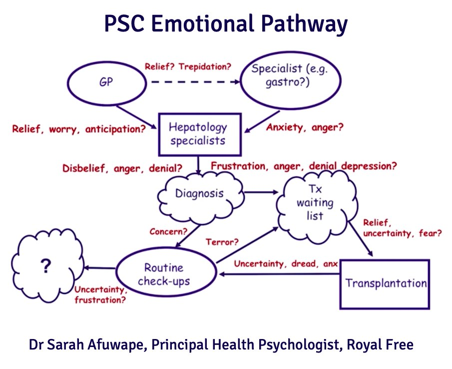 PSC Emotional Pathway